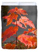 Sapling By The Pond Duvet Cover
