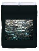 Sardines 1 Duvet Cover