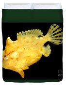 Sargassum Anglerfish Duvet Cover