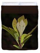 Sassafras Leaves Duvet Cover