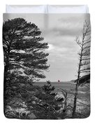Saugatuck State Park In November Duvet Cover