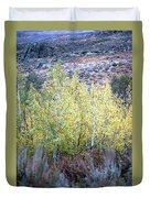 Sawtooth National Forest 2 Duvet Cover