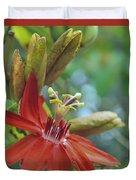 Scarlet Flame Passiflora  Duvet Cover