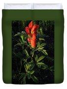 Scarlet Globemallow Duvet Cover