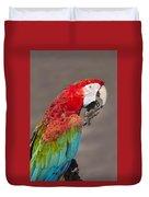 Scarlet Macaw - 2 Duvet Cover