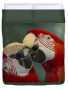 Scarlet Macaw Ara Macao Pair Kissing Duvet Cover