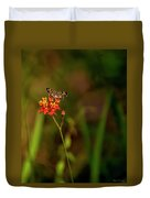 Scarlet Milkweed And Butterfly Duvet Cover