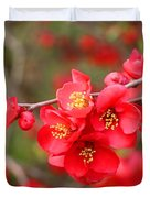 Scarlet Quince Blooms Duvet Cover