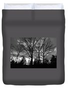 Scenic State Capital Duvet Cover