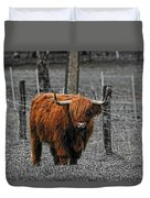 Scottish Highlander Duvet Cover