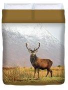 Scottish Red Deer Stag - Glencoe-2 Duvet Cover