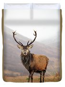 Scottish Red Deer Stag - Glencoe Duvet Cover