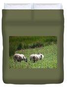Scottish Sheep Duvet Cover