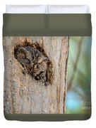 Screech Owl In A Tree Duvet Cover