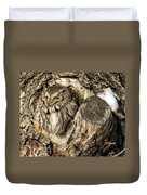 Screech Owl In Cavity Nest Duvet Cover