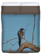 Scrub Jay Private Eye Duvet Cover
