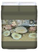 Sea Anemones Duvet Cover