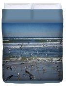 Sea Birds Feeding On Florida Coast Dsc00473_16 Duvet Cover
