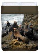 Sea Lion Chorus Duvet Cover