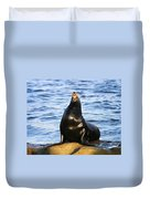 Sea Lion Sing Duvet Cover