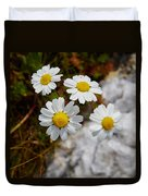 Sea Mayweed Duvet Cover