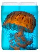 Sea Nettle Jellyfish - Orange And Turquoise Duvet Cover