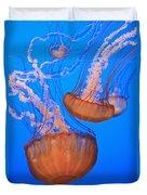 Sea Nettles Chrysaora Fuscescens In Duvet Cover