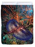 Sea Robin The Flying Gurnard Duvet Cover
