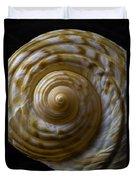 Sea Shell Beauty Duvet Cover