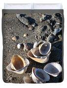 Sea Shells At Folly Beach In Charleston Sc Duvet Cover