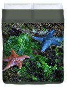 Sea Star Duvet Cover