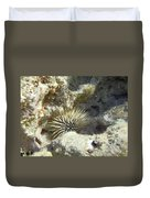 Sea Urchin Duvet Cover