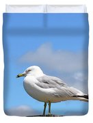 Seagull Beach Art - Sitting Pretty - Sharon Cummings Duvet Cover