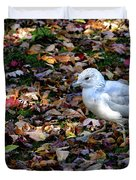 Seagull In The Fallen Leaves Duvet Cover