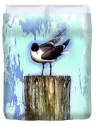 Seagull - Laughing Gull Pop Art  Duvet Cover