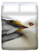 Seagull Pruning His Feathers Duvet Cover