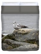 Seagull Sitting On Jetty Duvet Cover