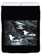 Seagull Trio Duvet Cover