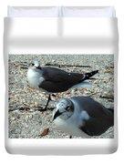 Seagulls #3 Duvet Cover