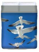Seagulls #4 Duvet Cover