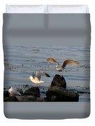 Seaguls 3 Duvet Cover