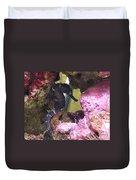 Seahorse3 Duvet Cover