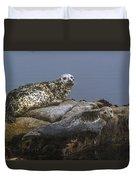 Seal Of Lover's Point Beach Duvet Cover by Atul Daimari