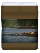 Seal Series 7 Duvet Cover