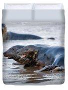 Seals Duvet Cover