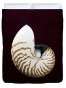 Seashell On Black Background Duvet Cover