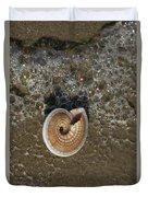 Seashells By The Sea Duvet Cover