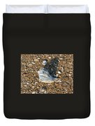 Seashells On The Seashore Duvet Cover