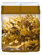 Seaweed In The Sand Duvet Cover