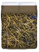 Seaweed On The Coast Of Iceland Duvet Cover